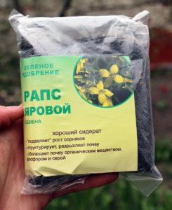 raps_yarovoi_250_gr